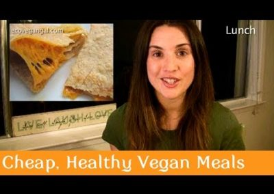 Cheap Healthy Easy Vegan Meals on YouTube